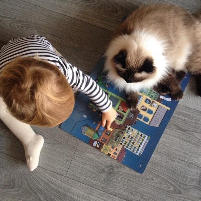 Фото 4 - Коты и дети