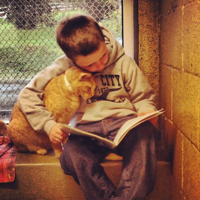 Фото 5 - Коты и дети