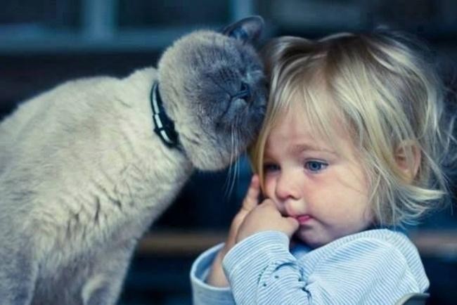 Фото 13 - Коты и дети