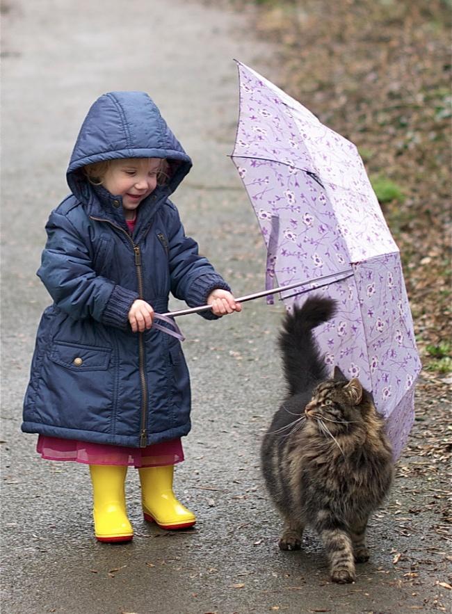 Фото 23 - Коты и дети