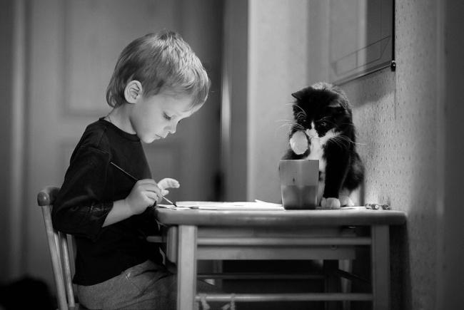 Фото 18 - Коты и дети
