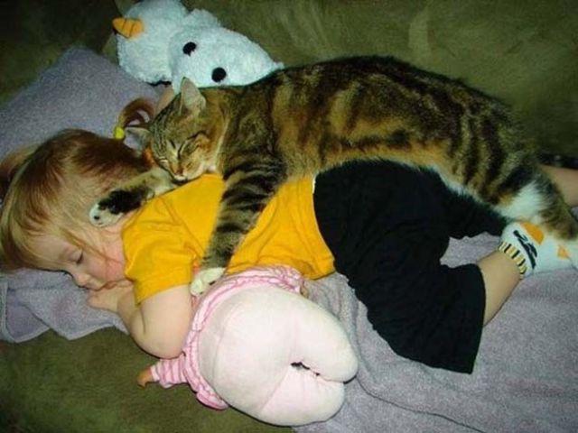 Фото 28 - Коты и дети