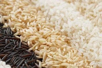 Фото - Рисовая диета