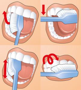 Фото - Техника чистки зубов