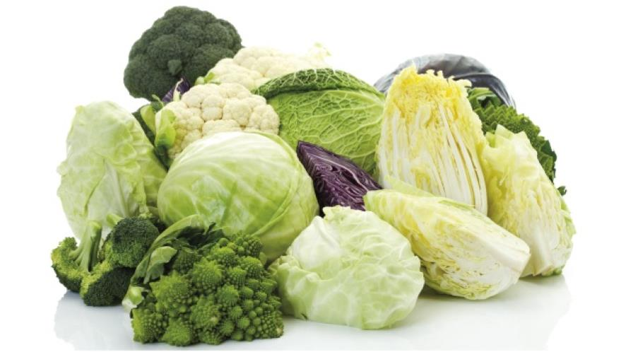 Фото - Овощи капуста, брокколи