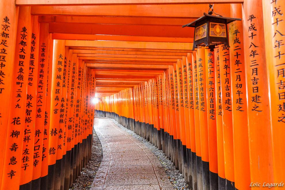 Фото - Оранжевый цвет в переходе